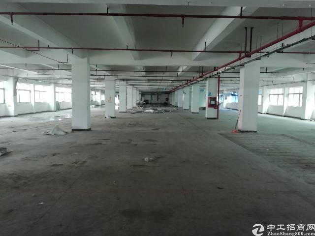 坪地独院  坪地新出独院标准厂房1-4层5400平米