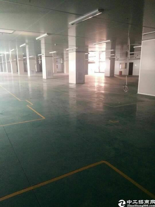 长安镇新出厂房