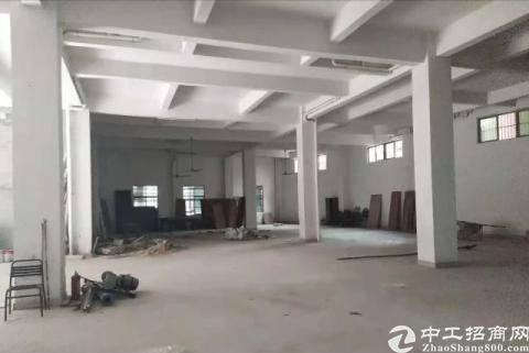 大岭山镇杨屋村新出标准一楼厂房780平出租