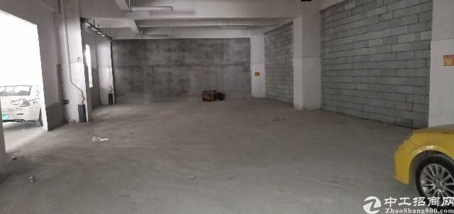 沙头标准一楼厂房360平