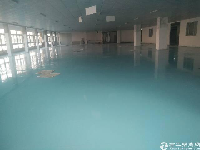 长安镇沙头新出独门独院标准厂房分租楼上一整层7000平方