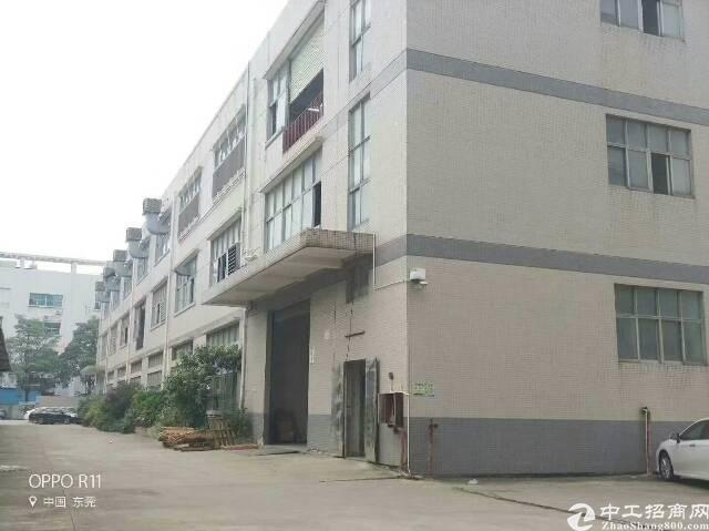 西乡固戍大门靠107国道边带办公室装修920平厂房招租