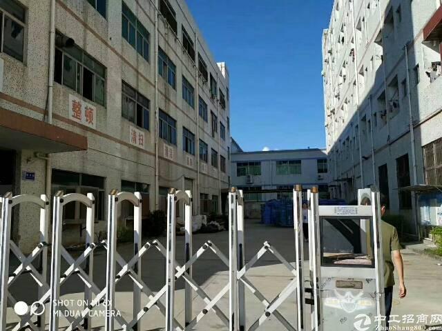 龙岗坪地原房东5400平独院厂房实际面积出租可分租