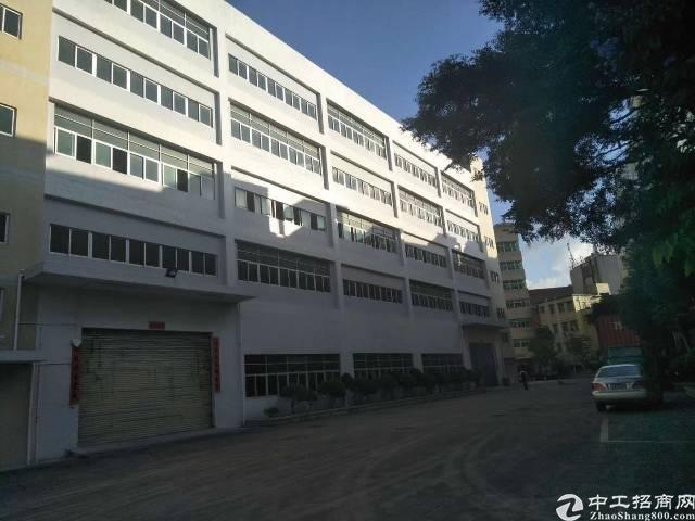 坪地独院标准厂房1-4层5400平带喷淋空地2000平