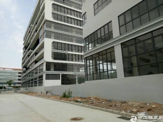 坪山 大工业区办公室,仓库50000平方,150起租