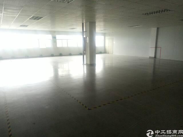 沙井沙三楼上整层1680平 精装修 厂房出租 可分租-图3