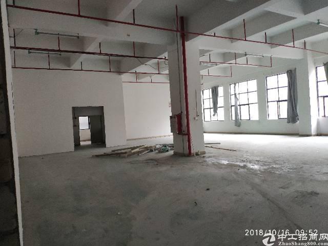 长安镇涌头新出空地超大厂房,大小可以分租