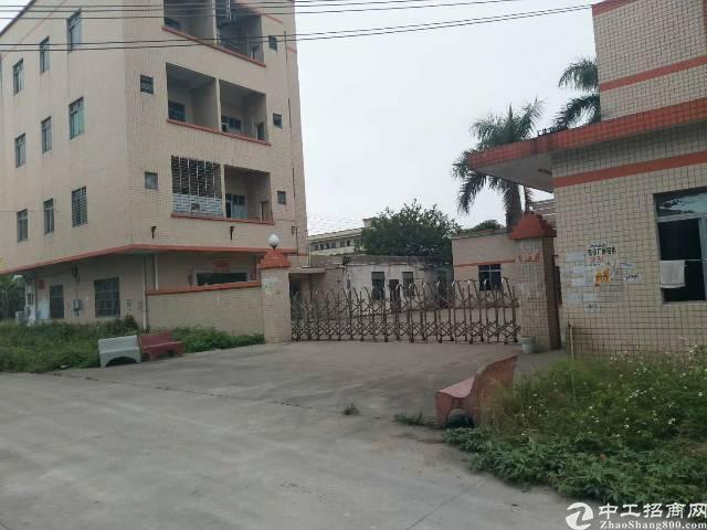 清溪镇三中原房东小钢构独院中间无柱子