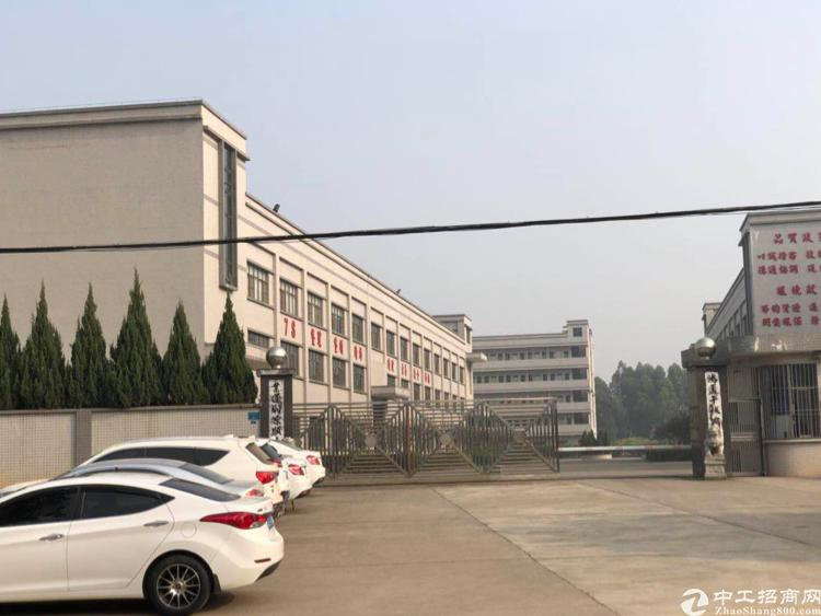 清溪镇三中新空标准一楼标准厂房2400平方招租