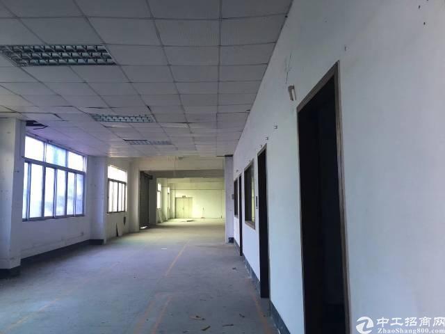 布吉新出一整层厂房1480平方可分租