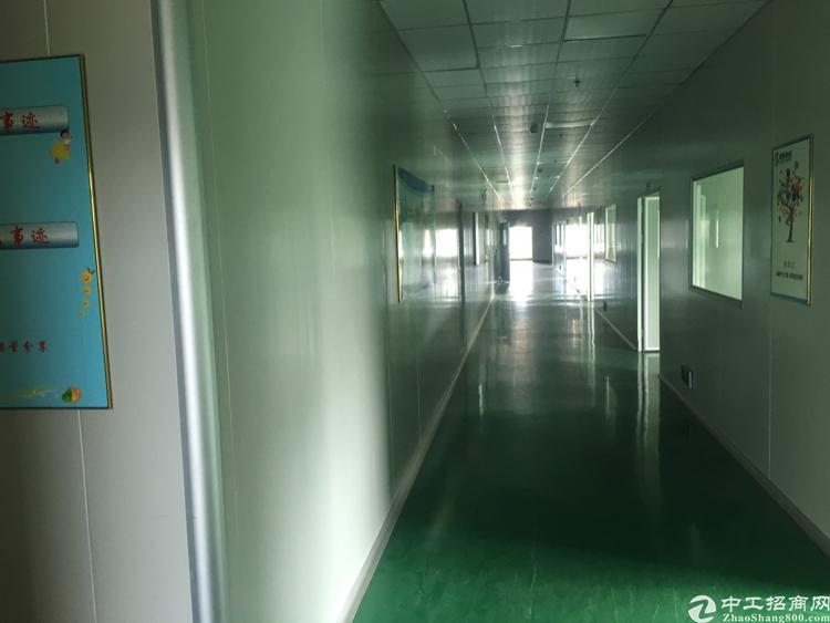 东城新出独门独院标准厂房10000平方