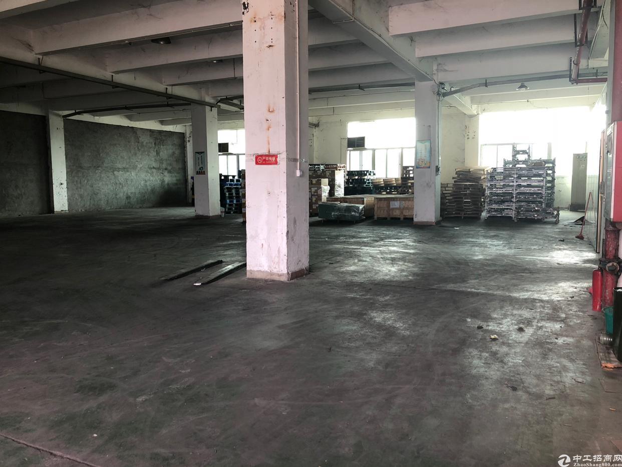 大工业区主干道边独院厂房一楼1100平米5米5高出租
