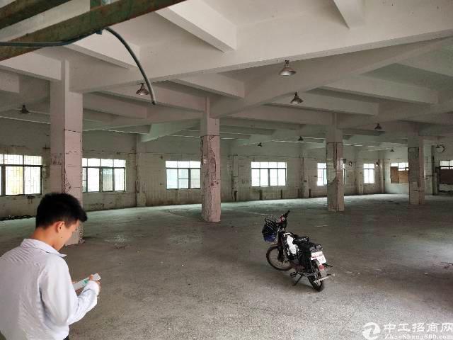 茶山镇新出优质厂房1300平方