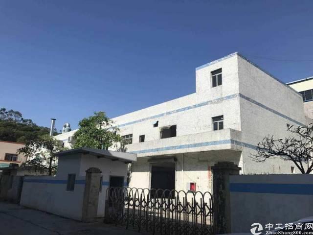 清溪镇刚新岀经典小独门独院标准厂房