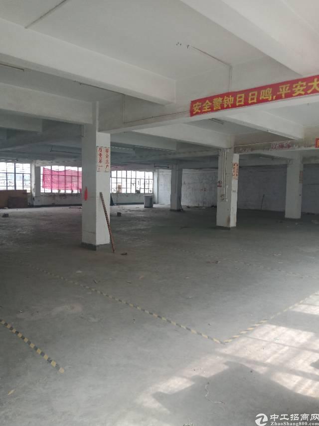 布吉秀峰工业区新出1600平厂房,合同可签2-5年,使用率高