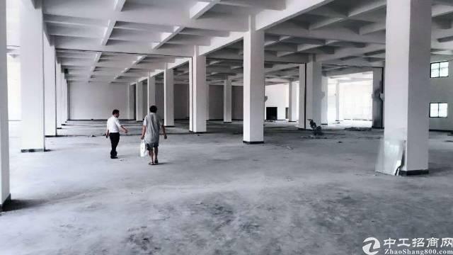 原房东新建厂房1500平出租