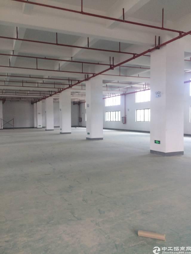 黄江镇全新标准厂房楼上1550平米出租