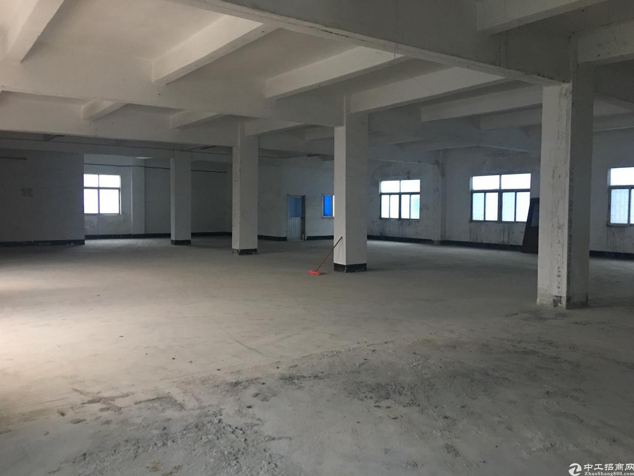 原房东3楼1000平现成装修厂房出租