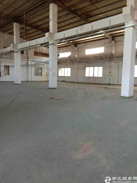 大岭山新出原房东单一层厂房1200平方米出租