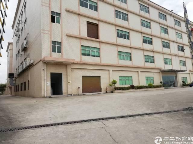 国有证厂房占地3000建筑5000售价1500万