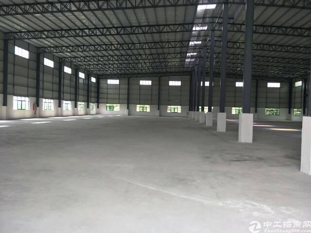 惠州市新圩镇2800平米单一层铁皮房出租