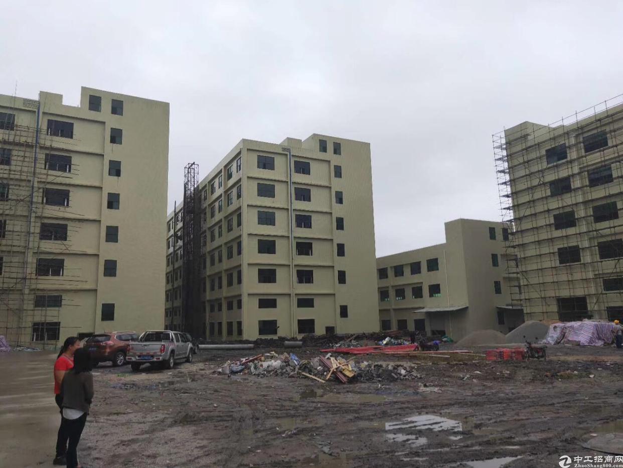 原房东新建厂房出租50000平大小可以分租一楼高7.8米