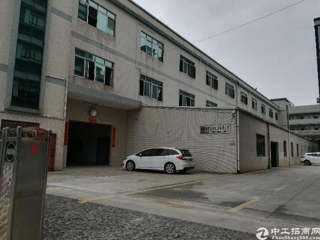 石排独门独院标准厂房 一楼2400平方 二楼2000平方