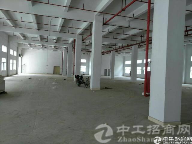 厚街赤岭村带红本园区现有整栋厂房7500平配315独立变压器