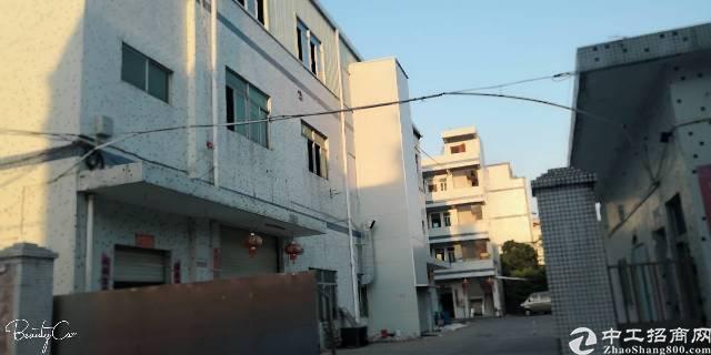 清溪镇刚新岀经典独门独院标准厂房