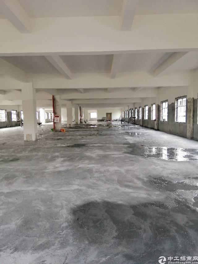 黄江镇太子酒店附近全新标准厂房1680平米出租