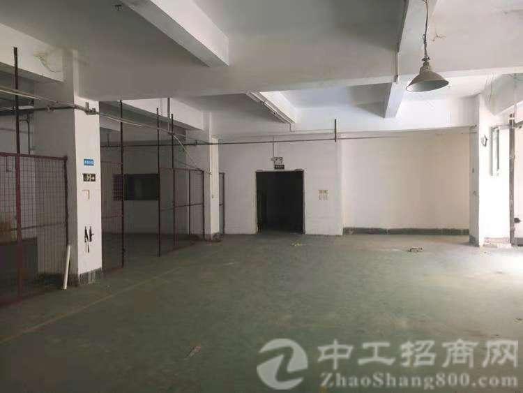 惠州市龙溪镇标准厂房出租-图2