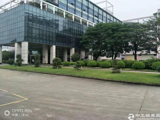 惠州新圩标准厂房招租