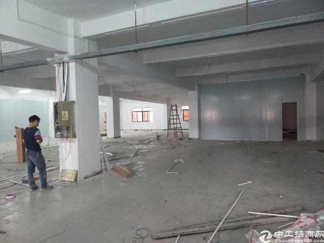 3楼标准厂房1100平