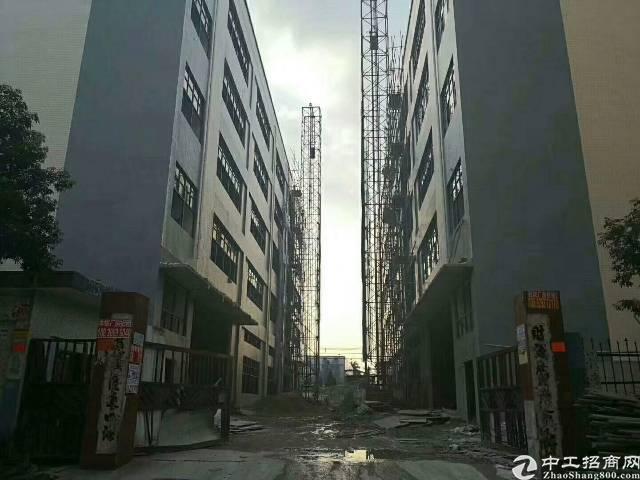 凤岗近深圳原房东新建厂房招租