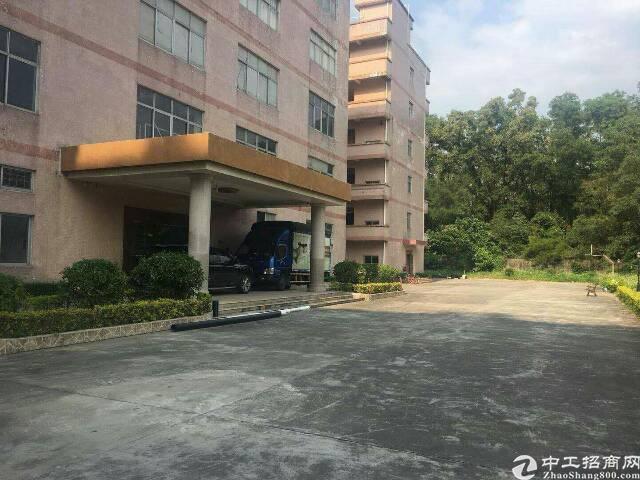 龙华独院厂房1-4层6800平方招租可分租