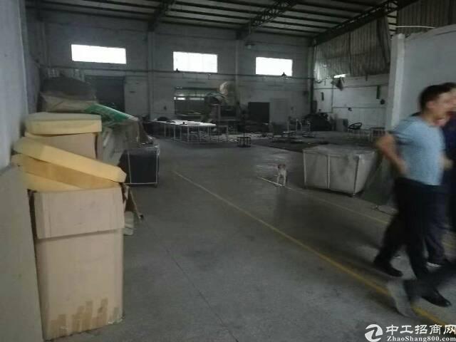 石碣新出原房东实业客分租单一层厂房