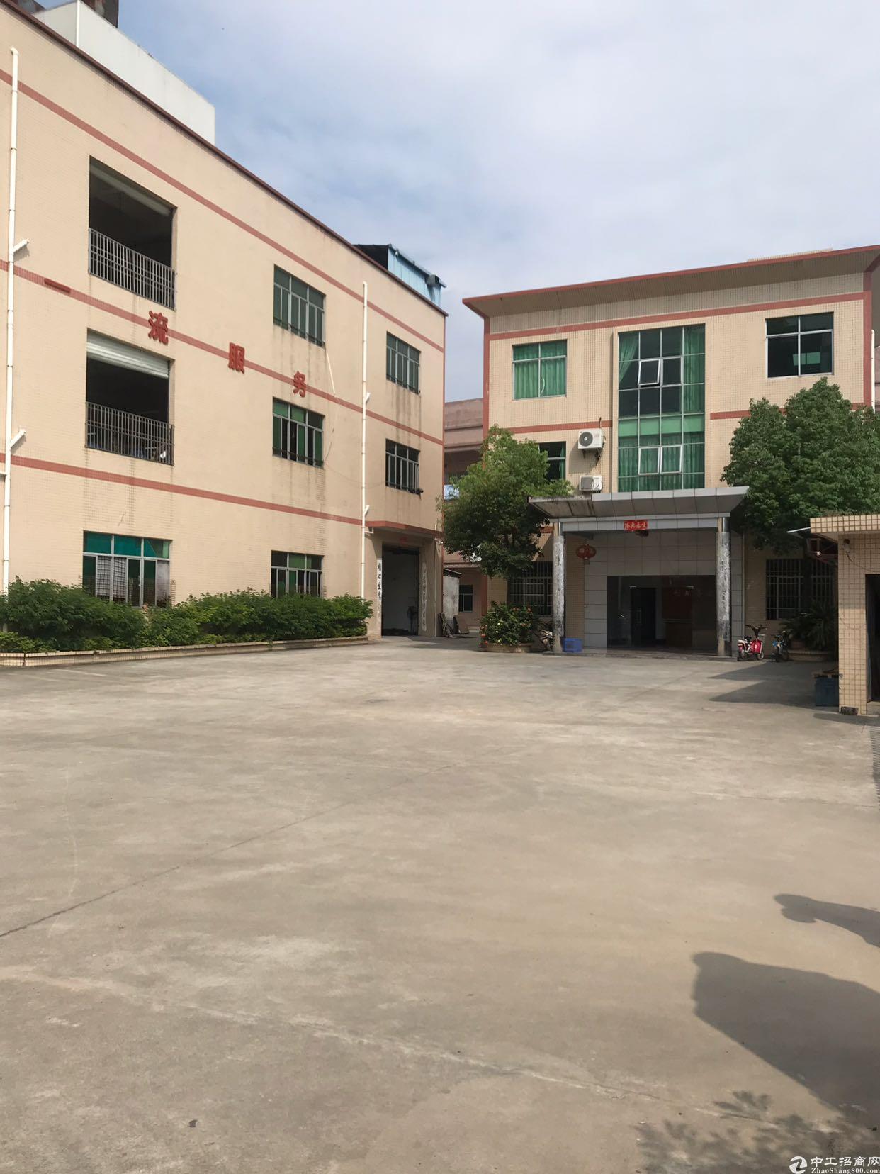 大岭山新出原房东厂房2-3楼每层2000平方实际面积出租