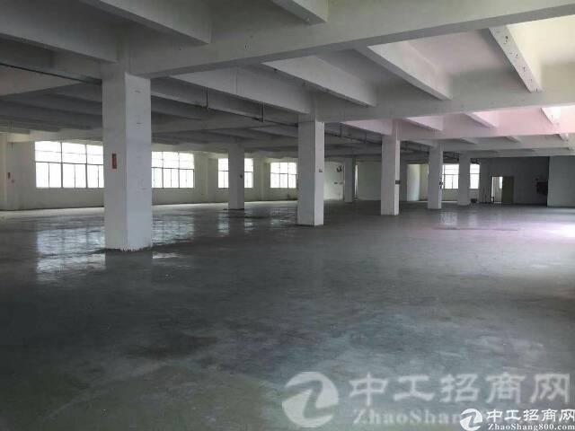 厚街镇环岗村工业园出租厂房3楼1050平带装修,合同4年一签