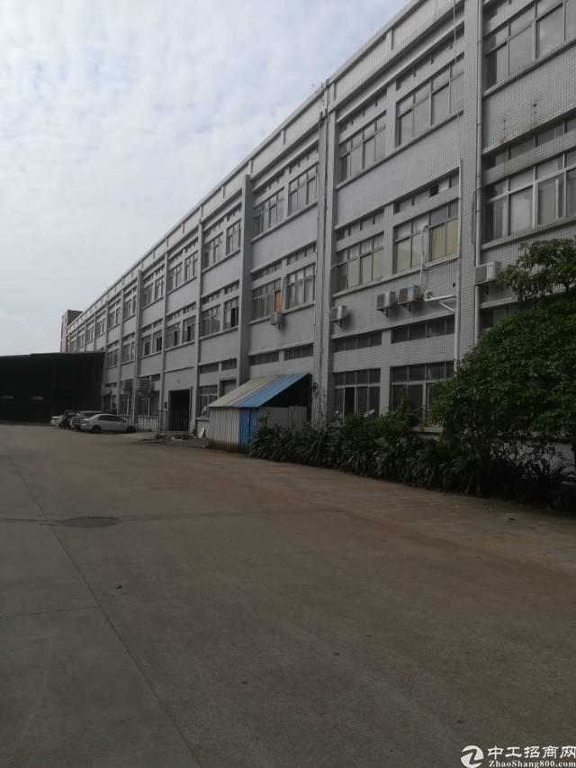 大岭山大型工业园标准厂房一楼1500平方厂房出租