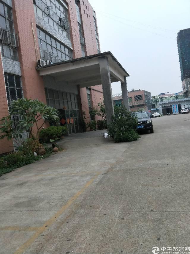 新塘新出一楼有现成办公室1980平方出租