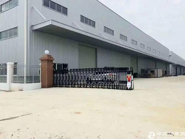 福永桥头主干道新出独栋钢构3000平厂房出租