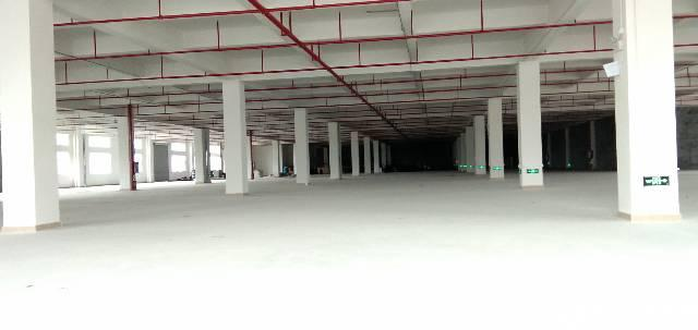 虎门怀德大埔工业区标准厂房6米高一楼3000平方注塑车间出租