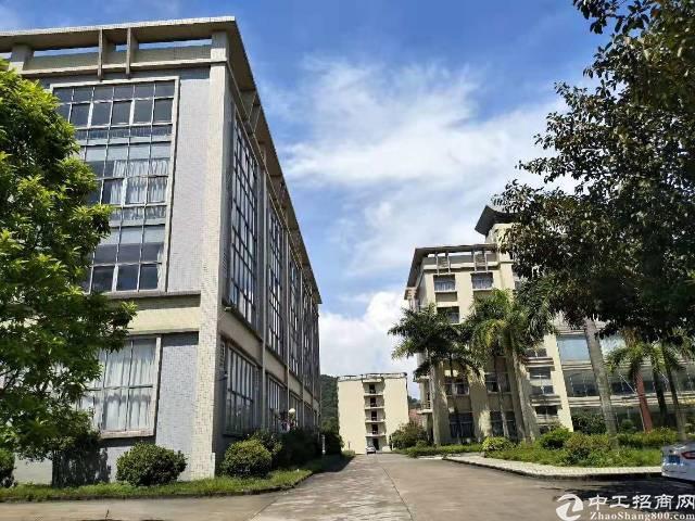原房东标准厂房10000平方,宿舍2000平方,空地2000