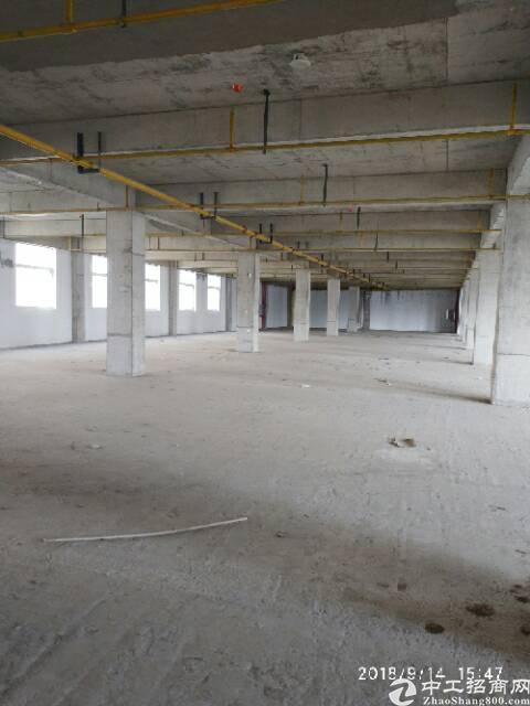 吴家山食品产业园1087平米厂房,仓储类物流加工全能型厂房。