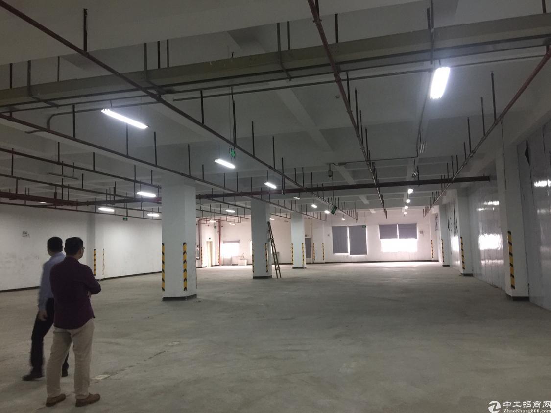 平湖街道厂房一楼4000平米出租使用率85%