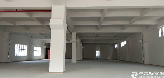 虎门镇南栅六区重工业厂房出租一楼带牛角,总面积15000平方
