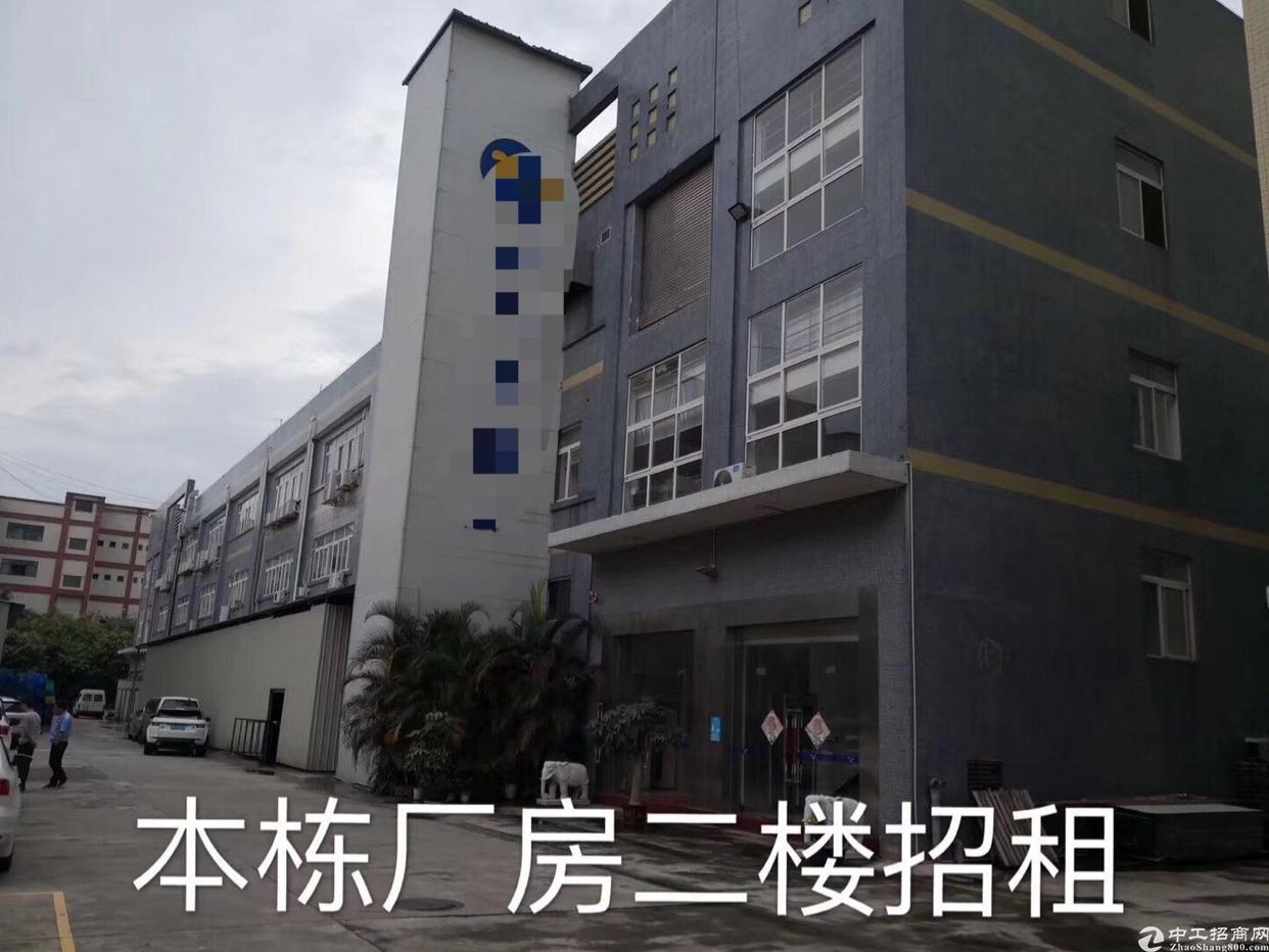大岭山工业区内2楼标准厂房出租