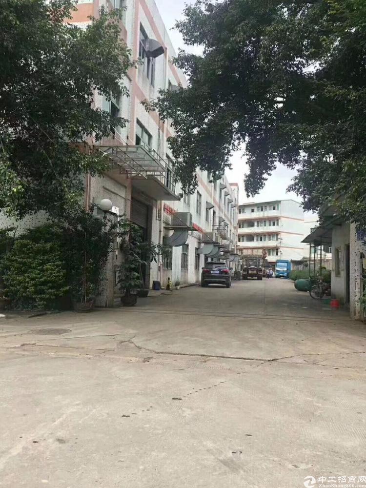 凤岗金凤凰工业区带装修独院厂房7500平,可分层租