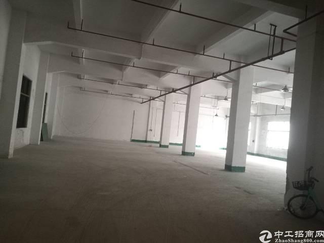 石碣新出工业园标准厂房一楼600㎡,现成水电装修办公室,现房