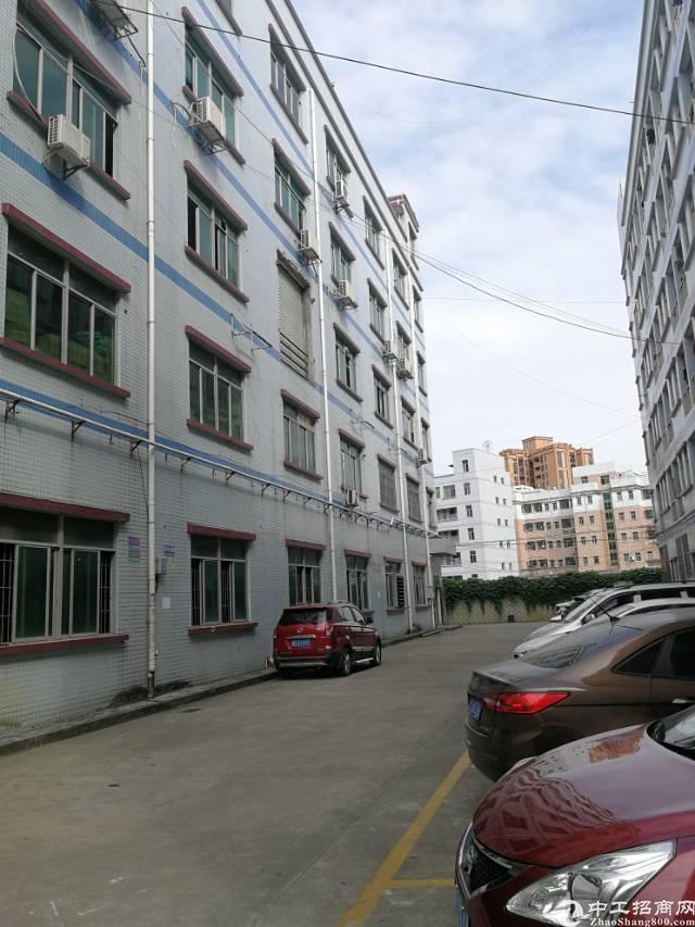 凤岗镇五联新出带办公室标准厂房2楼760平